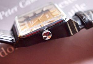 Vostok Plastic Case